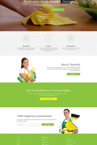 Cleanerly Homepage Design.png