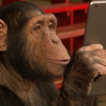 A monkey using a tablet